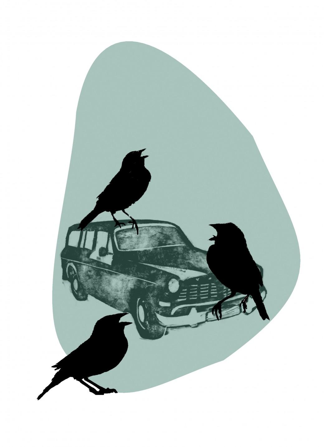 spurve og bil_blaa